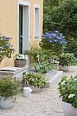 Kiesterrasse mit Schattenpflanzen am Hauseingang