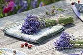 Lavendel - Blüten (Lavandula) gebündelt zum Trocknen
