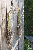 Frisch geernteten Knoblauch (Allium tuberosum)