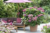 Schatten-Terrasse mit Loungeecke und Sonnenschirm