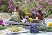 Kräuter zum Trocknen für Tee, Wellness und Kosmetik