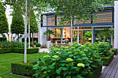 THE GLASS HOUSE, PETERSHAM. Architects Terry Farrell PARTNERS. Garden DESIGN by Sallis Chandler - GLASS PAVILION ROOM, LAWN, BETULA UTILIS JACQUEMONTII AND Hydrangea 'Annabelle'
