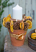THE Garden AND PLANT COMPANY, Hatherop, Gloucestershire: PLANT Pot CANDLE TABLE Centrepiece DECORATED with PINE CONES, Dried Orange SLICES AND CINNAMON STICKS