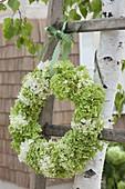 Grün-weisser Kranz aus Hydrangea (Hortensie) an alte Holzleiter gehängt