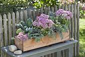 Selbstgebauter Holzkasten herbstlich bepflanzt
