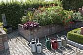 Hochbeet - Garten mit Sommerblumen