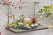 Einfaches Brett als Regal an die Wand gehängt, Kuchenform mit Glas