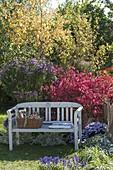Sitzplatz am Herbstbeet mit Gehoelzen und Stauden
