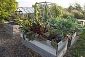 Gemüsegarten mit Hochbeeten