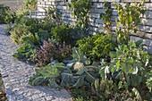 Gemüse - und Kräuterbeet vor Stützmauer