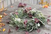 Herbstlicher Blaetterkranz aus Blättern von Stachys byzantina (Wollziest
