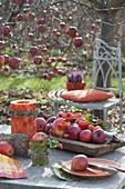 Herbstliche Tischdeko beim Apfelbaum