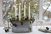 Schlichtes Adventsgesteck in Zink-Jardiniere am Fenster, weisse Kerzen