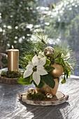 Weihnachtsstrauss aus Euphorbia pulcherrima (Weihnachtsstern)