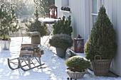 Verschneite Winterterrasse mit Koniferen