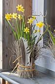 Narcissus 'Tete a Tete' (Narzissen) vorm Fenster