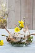 Kleine Osterdeko auf Glasschale mit Federn und Moos mit Eranthis