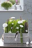Grauer Kasten mit Weizengras österlich dekoriert