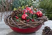 Rote Schale mit Kranz aus Ranken von Wein (vitis vinifera)