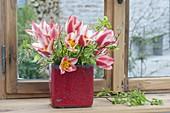 Tulipa (Tulpen) und Zweige von Amelanchier (Felsenbirne)