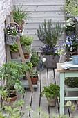 Kleiner Balkon mit Kräutern und Gemüse