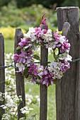 Kleines Kränzchen aus Blüten von Malus (Zierapfel) an Zaun gehängt