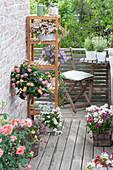 Kleiner Balkon mit platzsparender Sitzecke und Regal, Lantana
