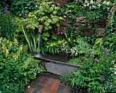 Water Feature: Water GUSHES From SPOUT INTO Old TIN BATH SURROUNDED by FERNS. THE SPOUT Garden, CHELSEA 97. Designer: Roger PLATTS