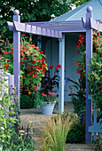 Purple Pergola with HANGING BASKET of Mixed TROPAEOLUMS & Canna 'RICHARD WALLACE' IN Blue Container IN Gardening Which / MET. POLICE 'A SAFE HAVEN'. HAMPTON 1999.