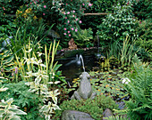 CAROLYN HUBBLE'S SHROPSHIRE GARDEN. Wildlife POND with MARBLE FROG, WATERLILIES, FERNS AND IRISES