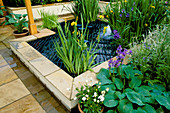 POND with DECORATIVE Cover & SAFETY GUARD by IRONHORSE STUDIOS SURROUNDED by HOSTA SIEBOLDIANA 'ELEGANS' & IRIS. HELP THE Aged'S GDN by R.TEMPLAR-WILLIAMS. CHELSEA