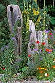NATURAL DRIFTWOOD SCULPTURE FENCE IN MARNEY HALL'S ROOTS AND SHOOTS Garden, HAMPTON Court
