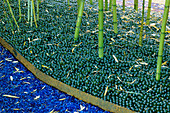 GLASS Garden: Blue Mulch AND Green MARBLES BENEATH BAMBOOS: DESIGN by ANDY CAO AND STEPHEN Jerrom, USA