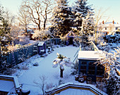 THE NICHOLS Garden at 69, ALBERT Road, COVERED with SNOW: TRACHYCARPUS FORTUNEI, GAZEBO, Blue DECORATIVE FENCING, Greenhouse AND COVERED SEAT