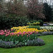 Keukenhof Garten, Niederlande