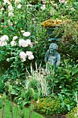 CAROLYN HUBBLE'S SHROPSHIRE Garden : Bronze Statue Beside English ROSE 'REDOUTE'