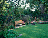 WOODEN BENCH with ANGULAR Formal LAWN, TERRACOTTA Pink RENDERED WALLS, Apple TREE, PHORMIUM TENAX PURPUREUM, SEDUMS, Verbena BONARIENSIS. DESIGN: Sarah LAYTON