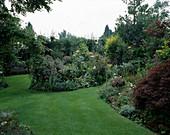 Rasen mit Holzbank, Acer palmatum / Ahorn und blühenden Staudenbeeten