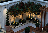 Modern ROOF Garden with White RAISED BED, GLASS CANDLE HOLDERS, CLIPPED Box, White GRAVEL AND STANDARD PHOTINIA. DEVELOPMENT by Candy BROS. LIGHTING:LIGHTING DESIGN INT.