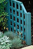 Blue TRELLIS Panel with FESTUCA GLAUCA IN FRONT. Designer: Sarah LAYTON