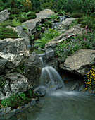 WATERFALL OVER SLATE Bolders with MEADOW PLANTING