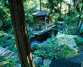 KOi POND AND INDONESIAN GAZEBO IN THE WOODLAND GARDEN. DESIGNERS: ILGA JANSONS AND MIKE DRYFOOS