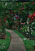 Rosengarten von Poitiers in Frankreich