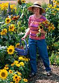 Blumen schneiden für Bauerngartenstrauß