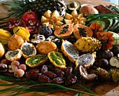 EXOTEN Aussäen:VON oben links:Ananas,SÜß-
