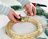 Adventskranz binden. 1. Step: Cupressus arizonica mit Wickeldraht auf Strohring