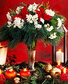 Weihnachtsstrauß aus Tazett-Narzissen, Seidenkiefern und Weihnachtssternblüten