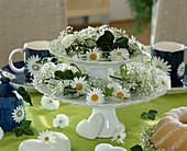 Etagere mit Margeritenblüten, Schleierkraut / Gypsophila und Efeublättern / Hedera