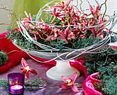 Schale mit Orchideenblüten