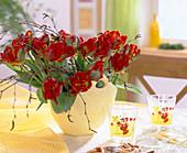 Tulipa-Hybr. / Papageientulpe mit Birkenzweige